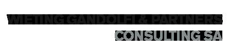 Wieting Gandolfi & Partners - Consulting sa